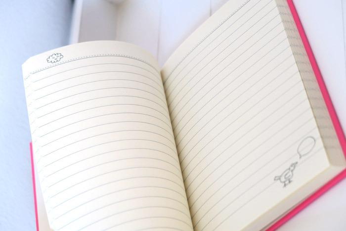 hema notitieboekjes roze