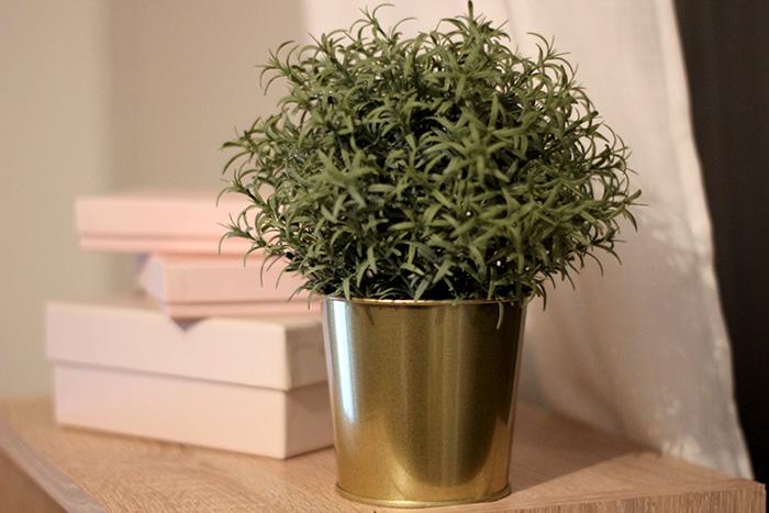 interieur foto plant ikea