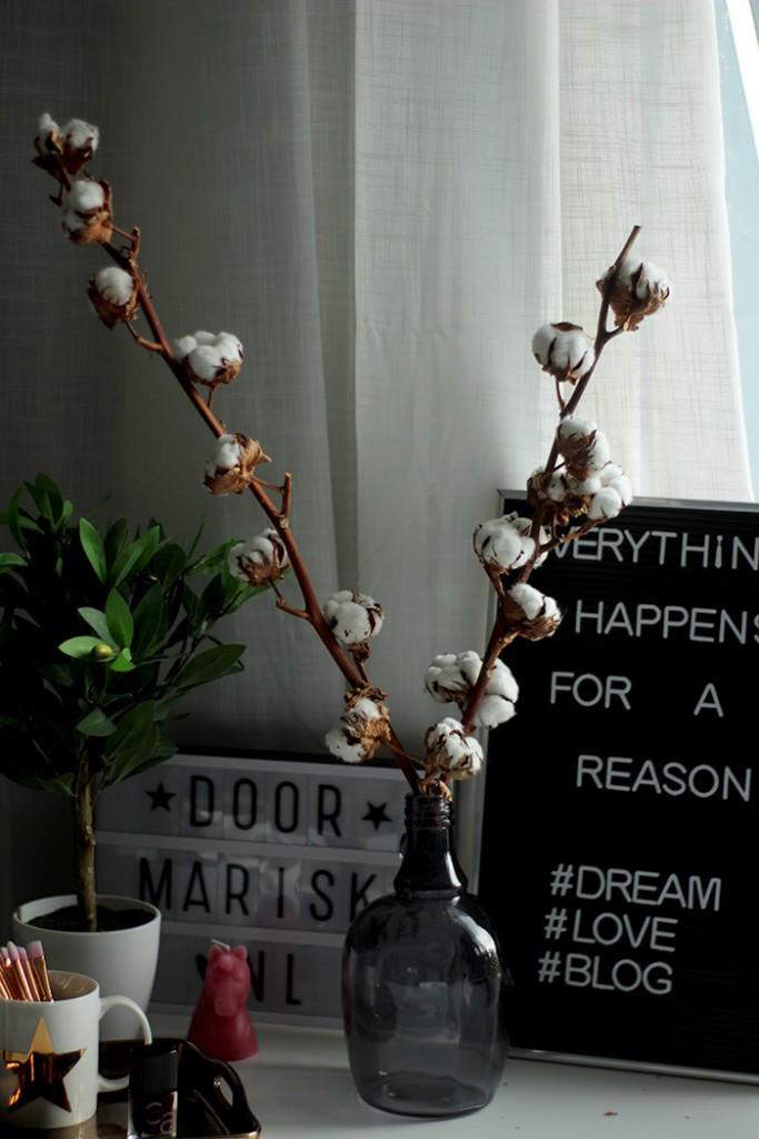valentijnscadeau greetz katoenplant